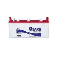 Osaka Batteries Platinum 2 Plates P 210