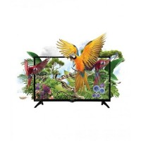 Orient Macaw 40 Inch FHD Black LED TV